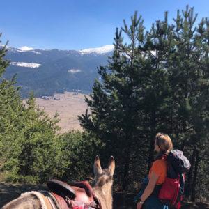 Day-Tour-Panoramic-Hike-17