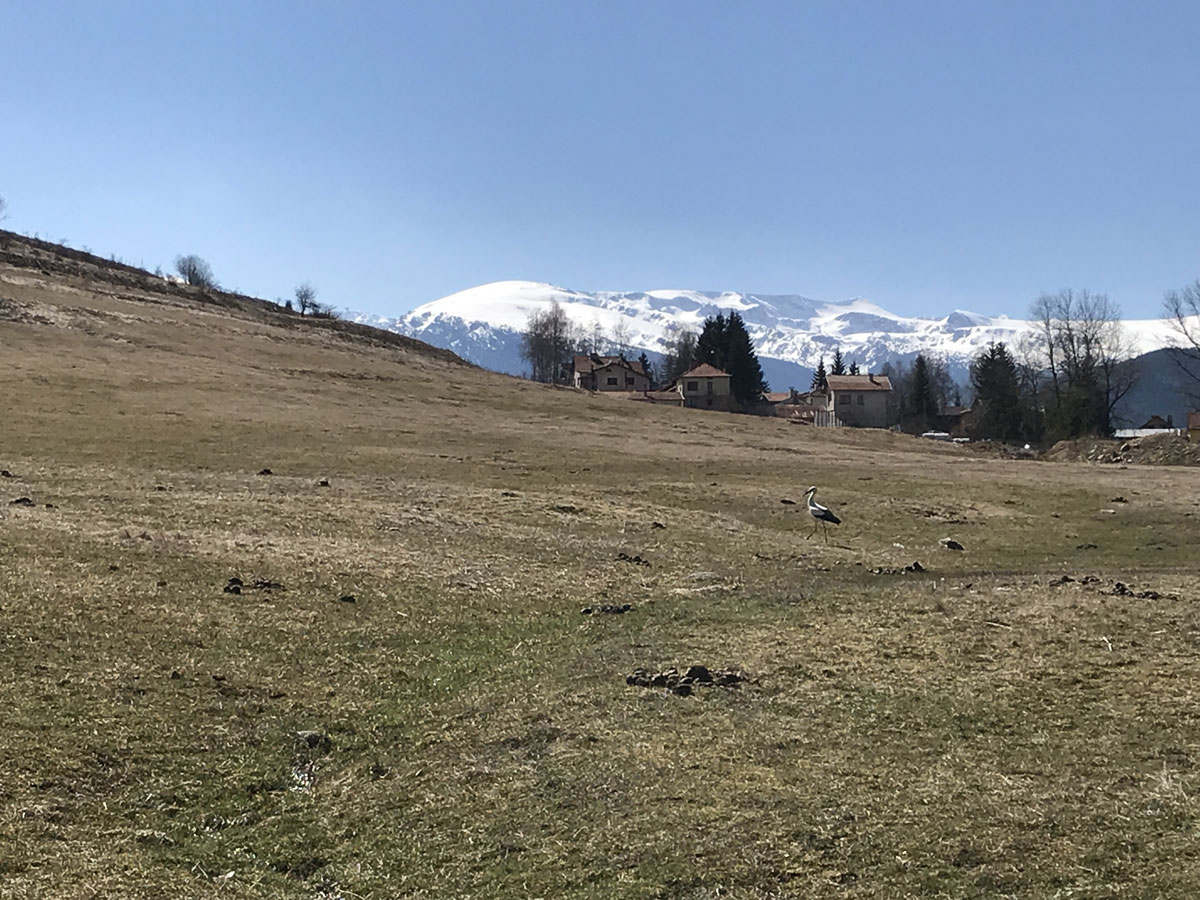 Day-Tour-Panoramic-Hike-2