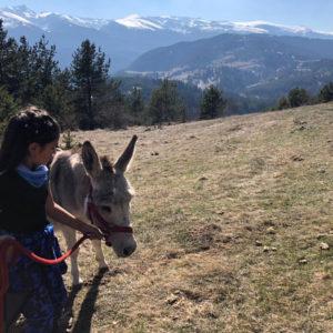 Day-Tour-Panoramic-Hike-5