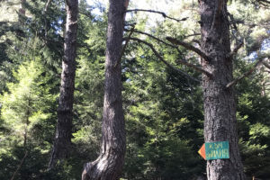 Day-Tour-Panoramic-Hike-6