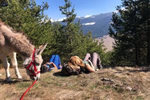 Day-Tour-Panoramic-Hike-9