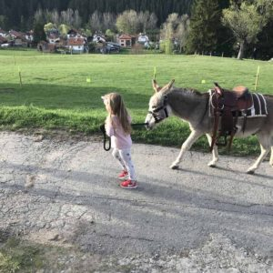 Donkey-riding-with-children-1
