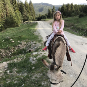 Donkey-riding-with-children-10