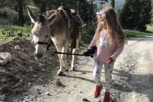 Donkey-riding-with-children-3