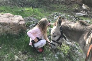 Donkey-riding-with-children-5
