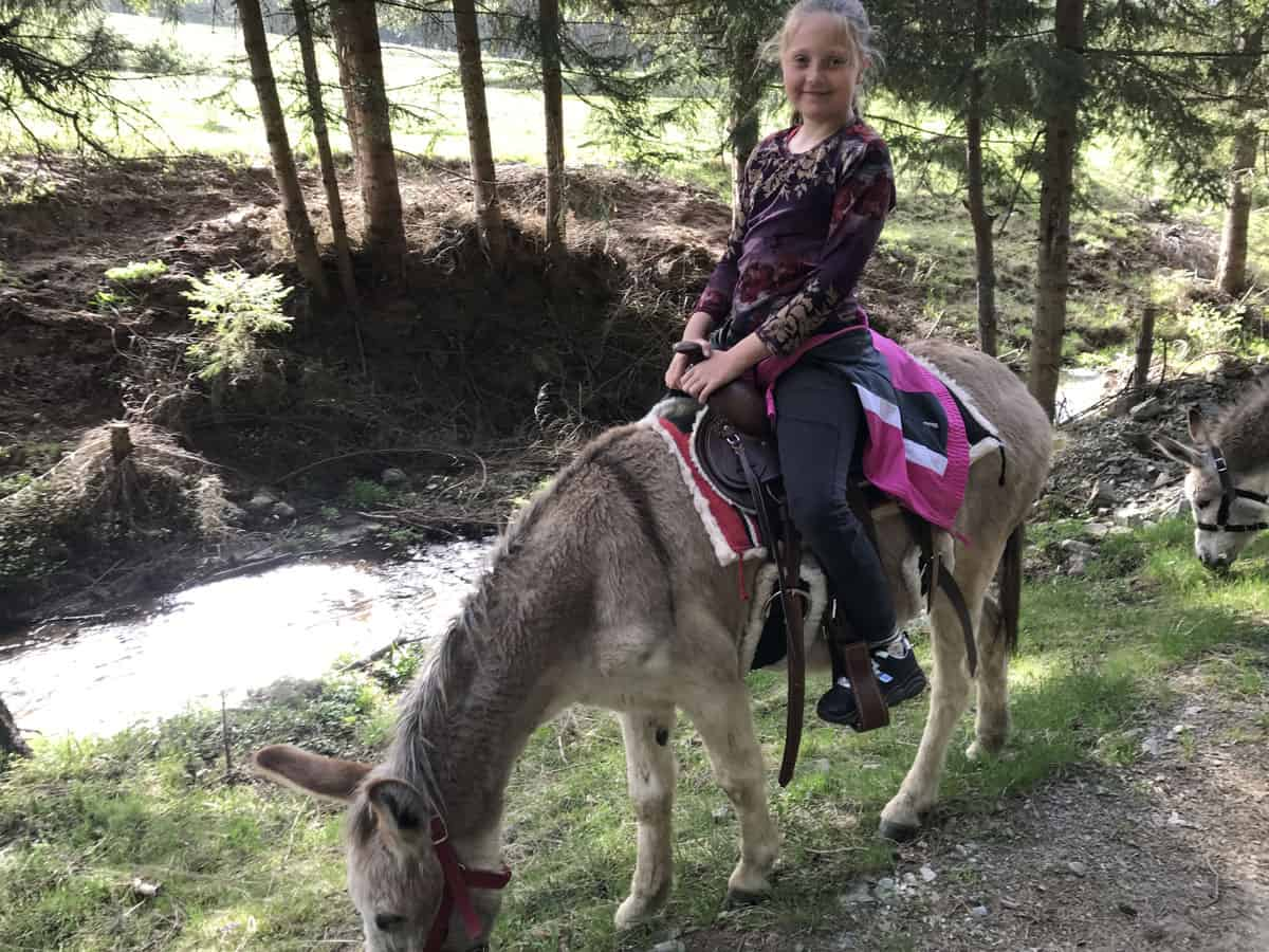 Donkey-riding-with-children-6
