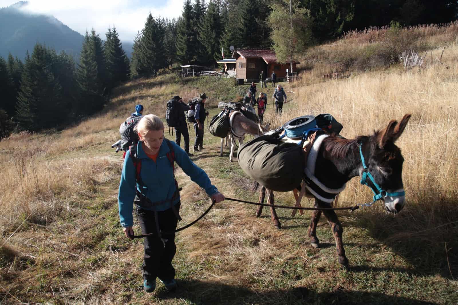 trip-thracian-donkey-12