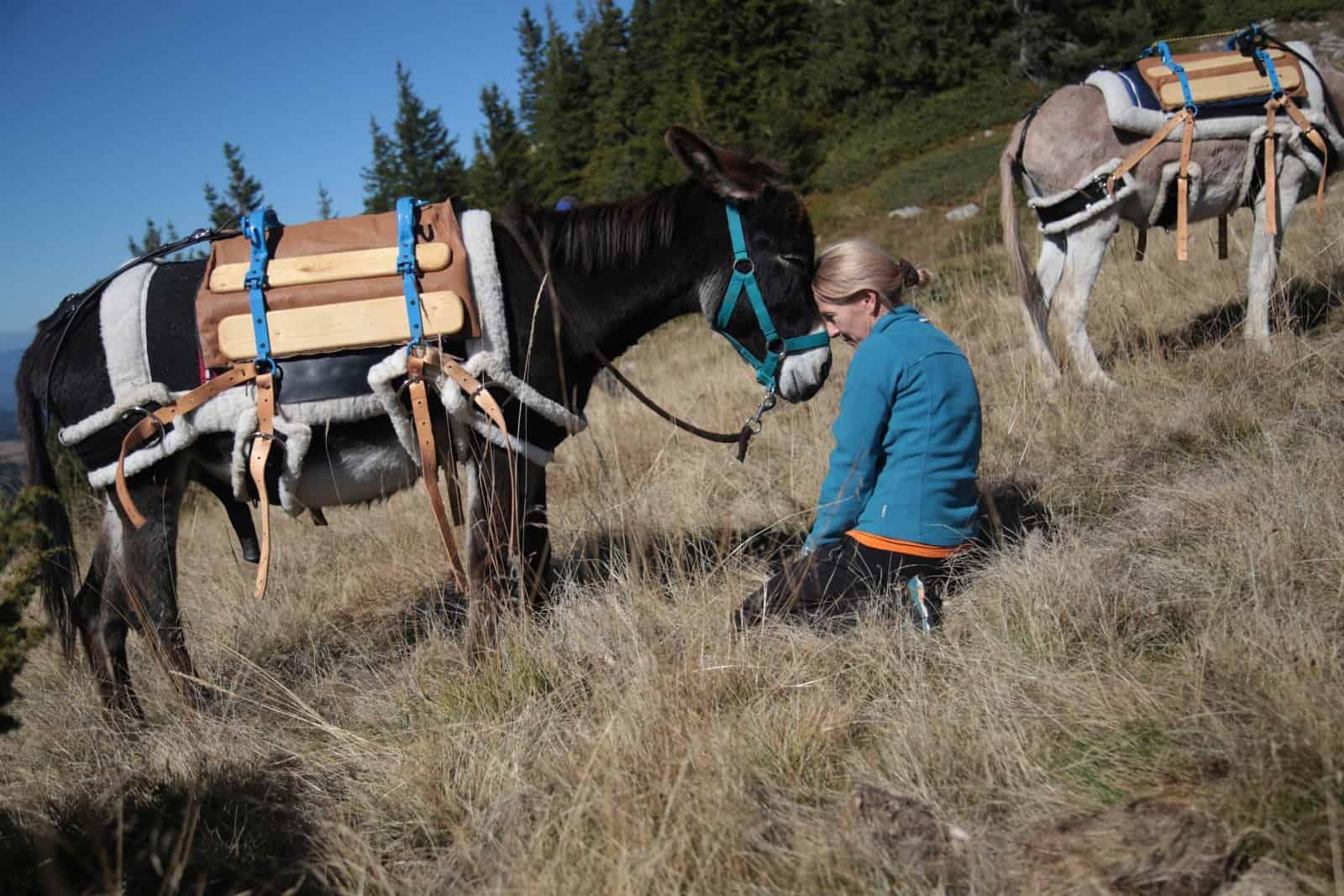 trip-thracian-donkey-15