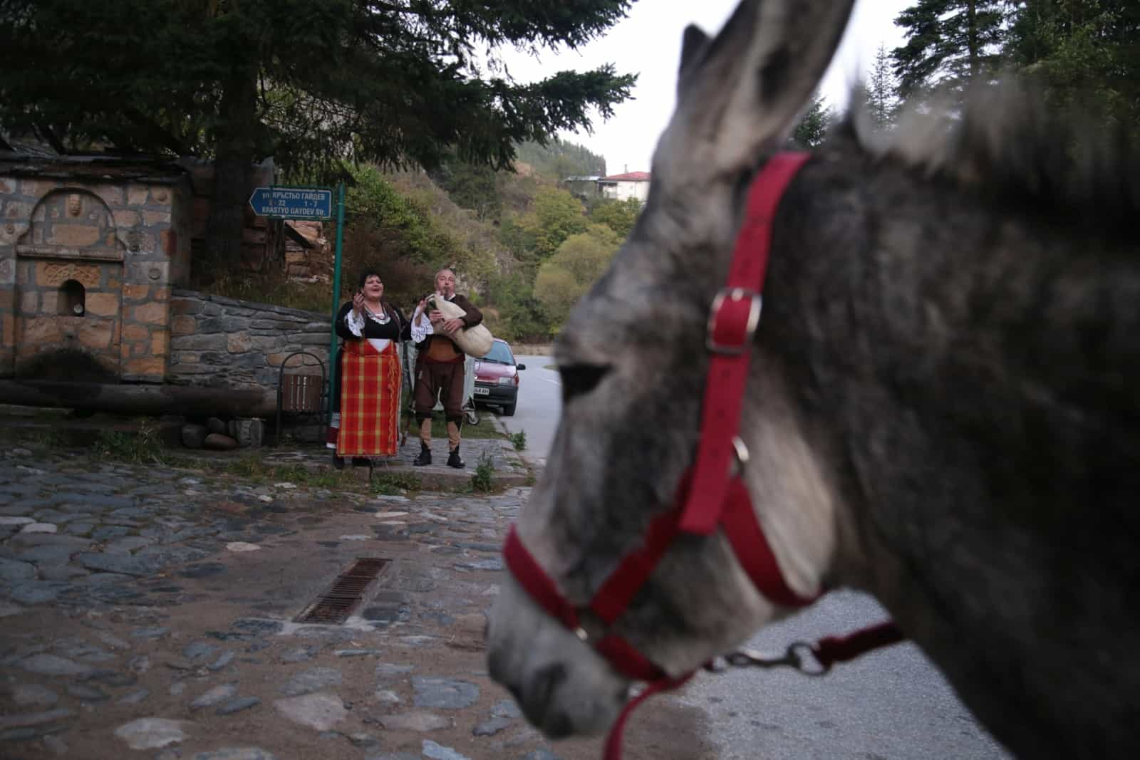 trip-thracian-donkey-18