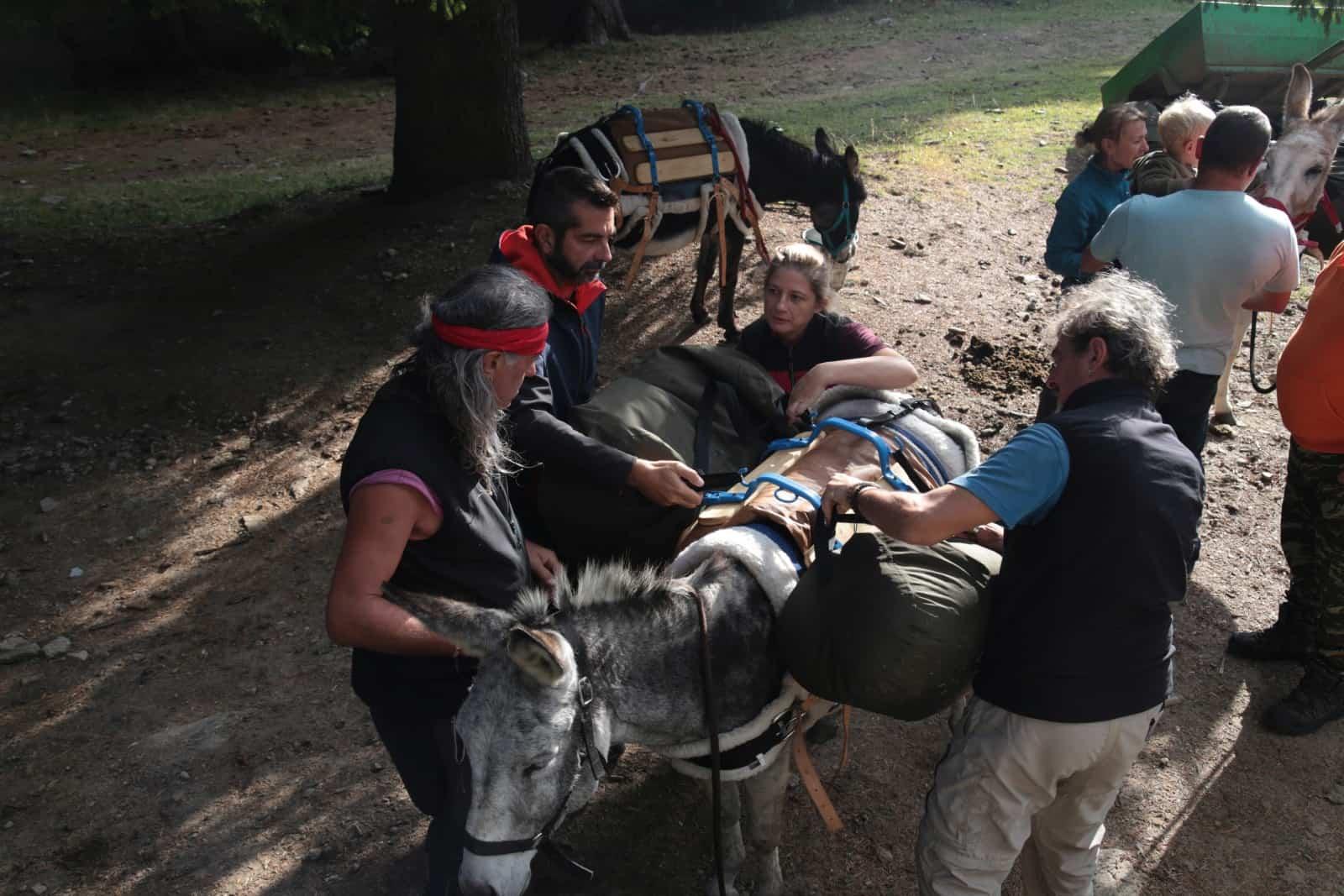 trip-thracian-donkey-20