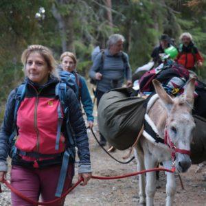 trip-thracian-donkey-22