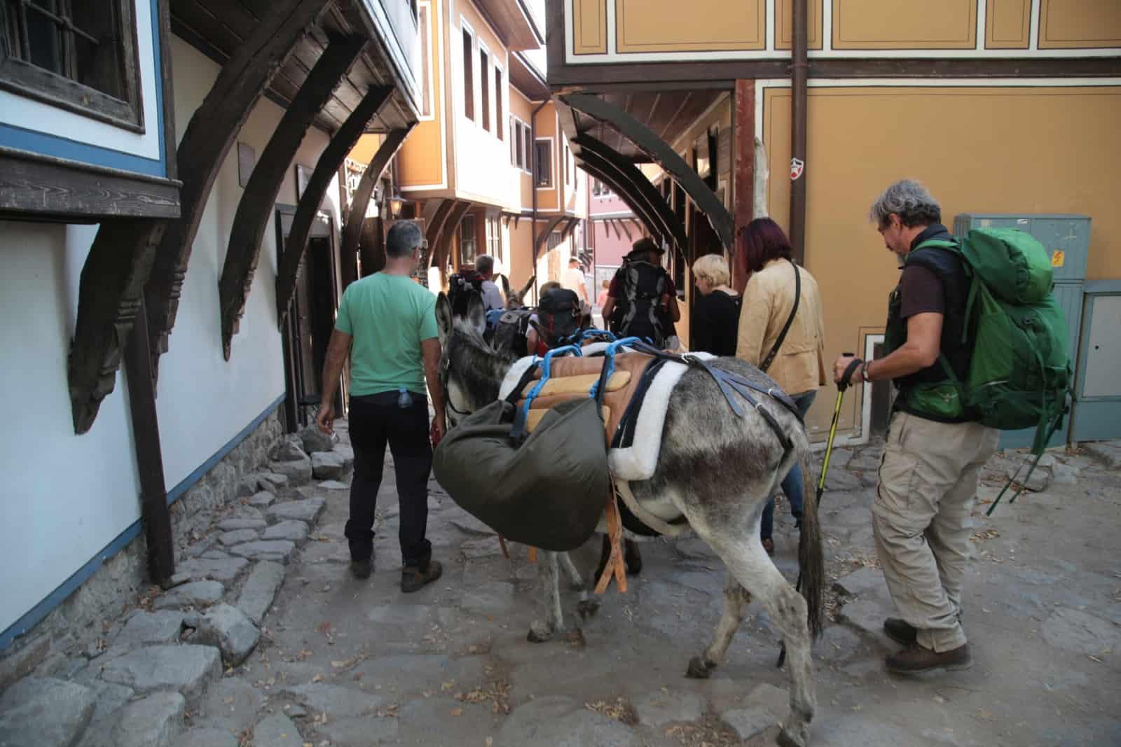 trip-thracian-donkey-29