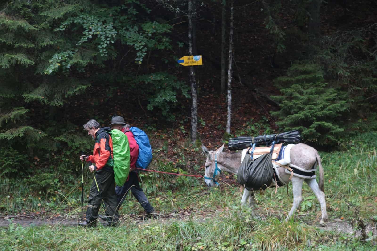 trip-thracian-donkey-9